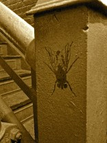 Banksy-like fly in the stairwell