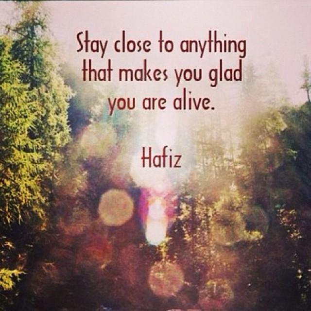 Hafiz Quotes Delectable Hafiz The Gift Quotes Dealssiteco