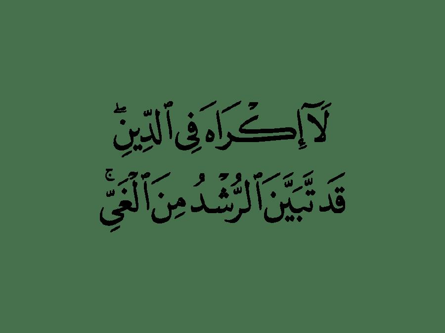 لا إكراه في الدين قد تبين الرشد من