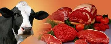 Venta de carne de res en Cuba, de la veda al reordenamiento