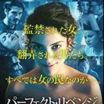 映画『パーフェクト・リベンジ』意外に素直なサスペンス作品ネタバレ