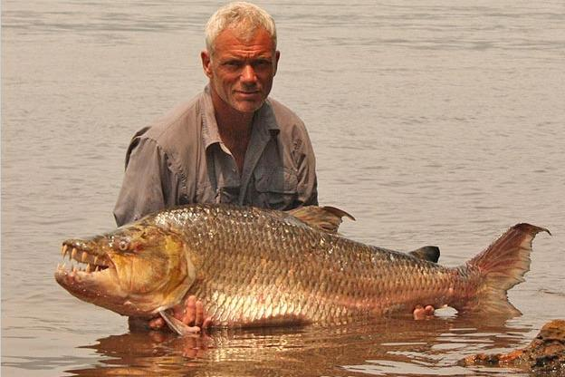 Goliath Tigerfish Photos | River Monsters | Animal Planet