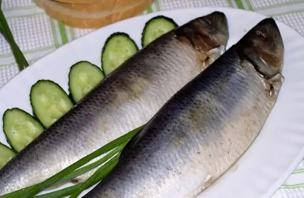 Recettes: HerRing salé - 17 meilleures recettes. Comment saluer le hareng à la maison savoureux?