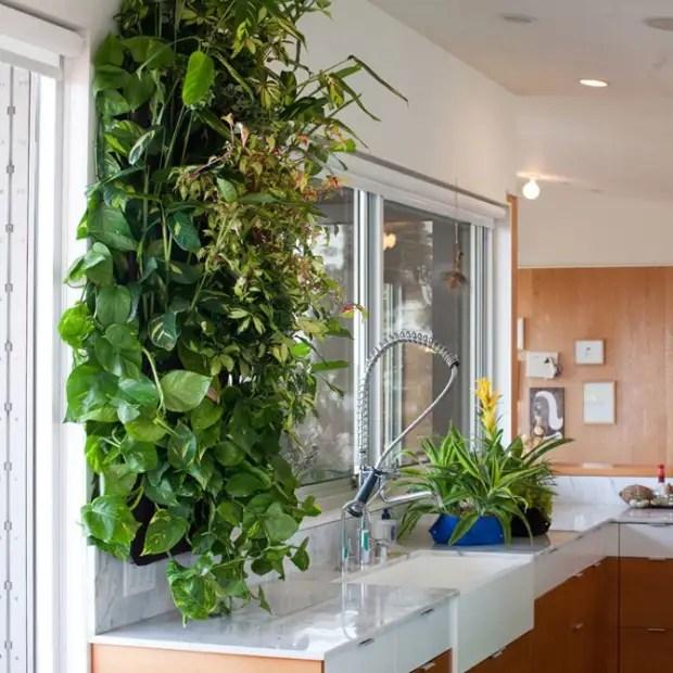 Decoração da parede de vida cozinha paisagismo vertical