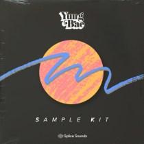 Splice Sounds Yung Bae Sample Kit WAV
