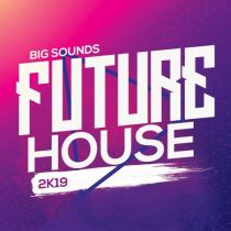 Big Sounds Future House 2K19 WAV MIDI PRESETS