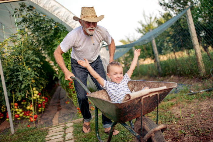 A Lexington man gardens with grandson