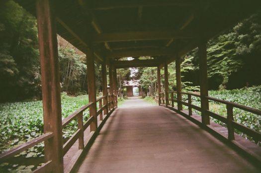 東広島 河内町 竹林寺