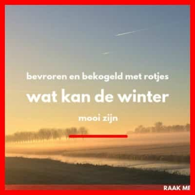 Mooie winter