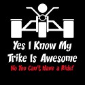 yes i know my trike is awesome no you can't have a ride biker design