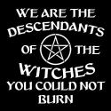we are the descendants of the witches you could not burn pagan shirt