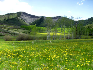 St. Benedict's in Snowmass, Colorado