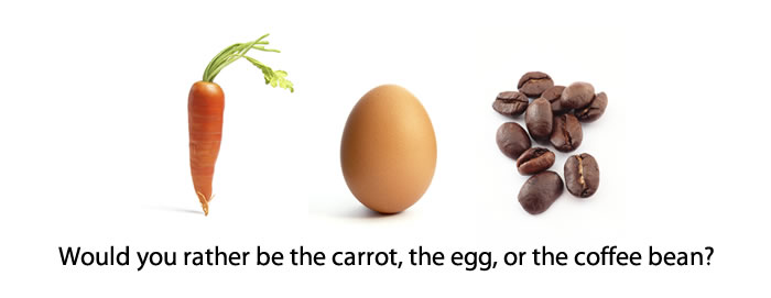 Carrot Egg or Coffee Bean?