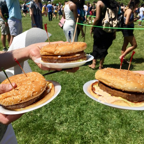 2017 Chicago Vegan Food Fest Doomies