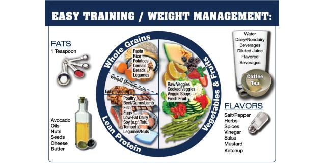 performance plate day-to-day nutrition for athletes