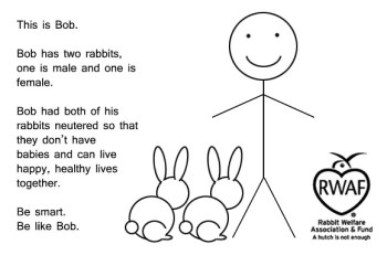 This is Bob. Bob has two rabbits, one is male and one is female. Bob had both of his rabbits neutered so that they don't have babies and can live happy, healthy lives together. Be smart. Be like Bob.