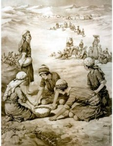 Gathering-Manna