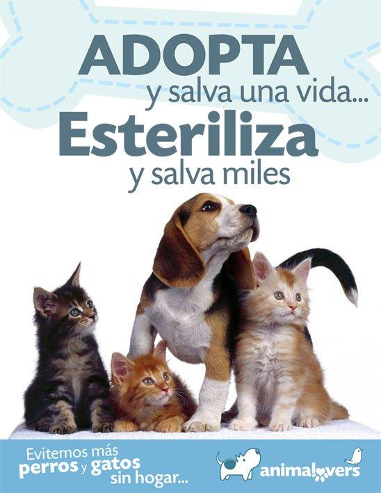 Esterilizar mascotas salva muchas vidas y mejora su calidad de vida