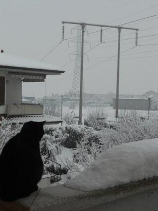 sierra e neve