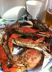 Crabs Picture