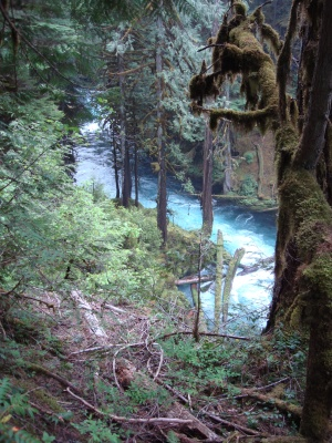 Koosah Falls, between Crater Lake and Eugene. The water is really that color of blue.