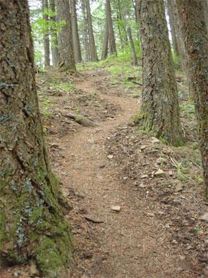 A relentless uphill climb along Starvation Ridge