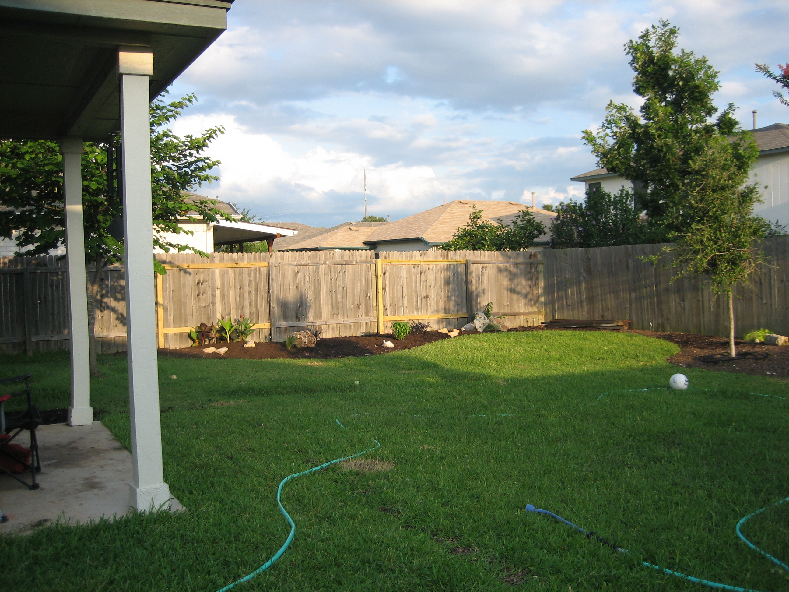 Planting trees-Growing Redbud to the left