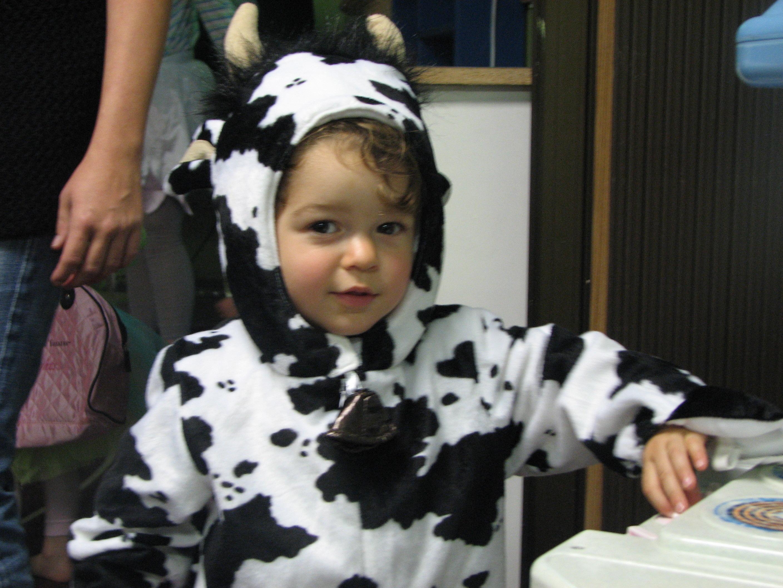 """Cousin Boaz """"the cow"""""""