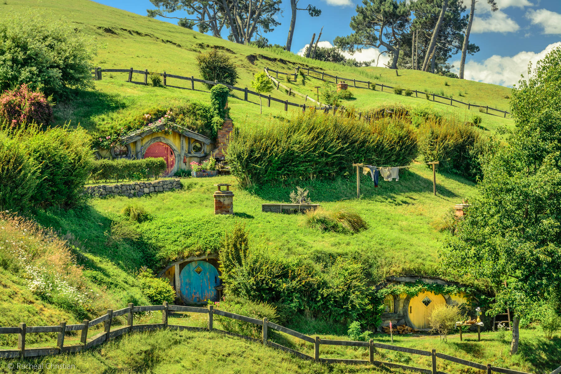 Hobbit holes - Hobbiton by Racheal Christian -