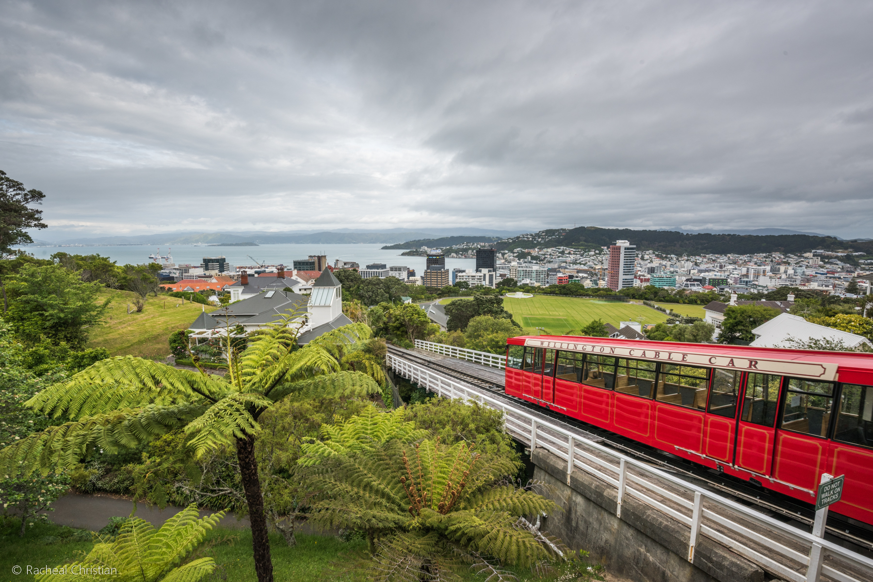 Great Start To NZ Photo Tour In Wellington