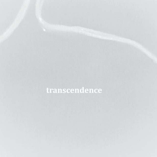 Transcendence-part The Truth of Virtuality by Rachela Abbate
