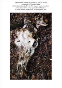 rachela abbate 8_skull commutecture