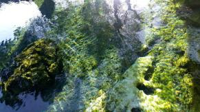 Clear hot spring water