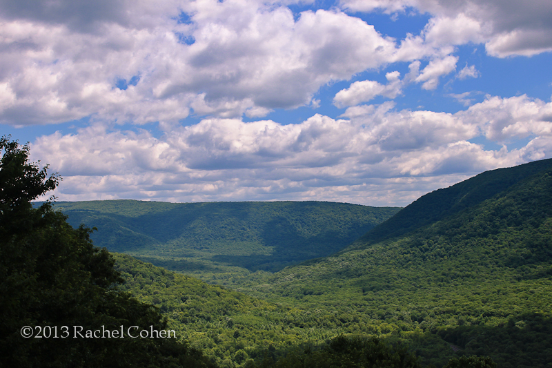 The Laurel Highlands of PA.