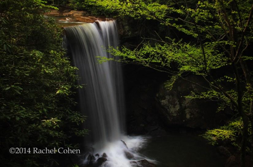 """""""Dreamy Cucumber Falls"""""""