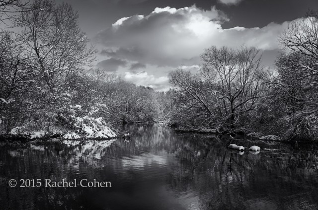 """""""Afternoon in Shades of Gray""""   A  wonderfully moody  black and white version of  """"On a Golden Afternoon"""""""