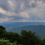 """The Blue Ridge in Summer"""
