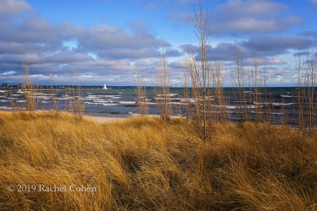 Windblown beach grasses, waves, and beautiful clouds on Lake Ontario!