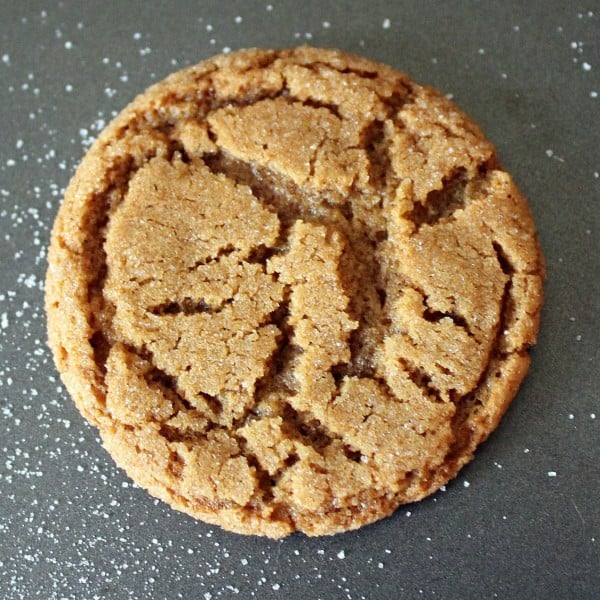 gingersnap-christmas-time