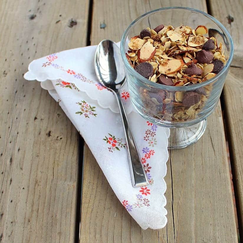 Mocha Granola Image with spoon and chocolate chips