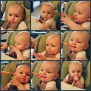 baby-food-collage