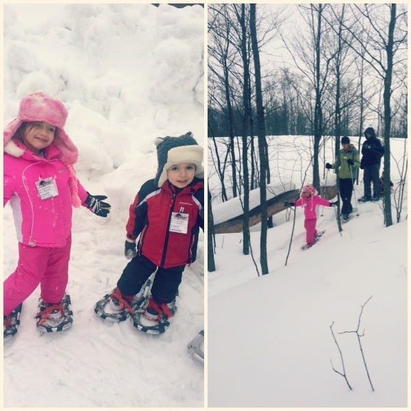 snowshoeing at treetops photo