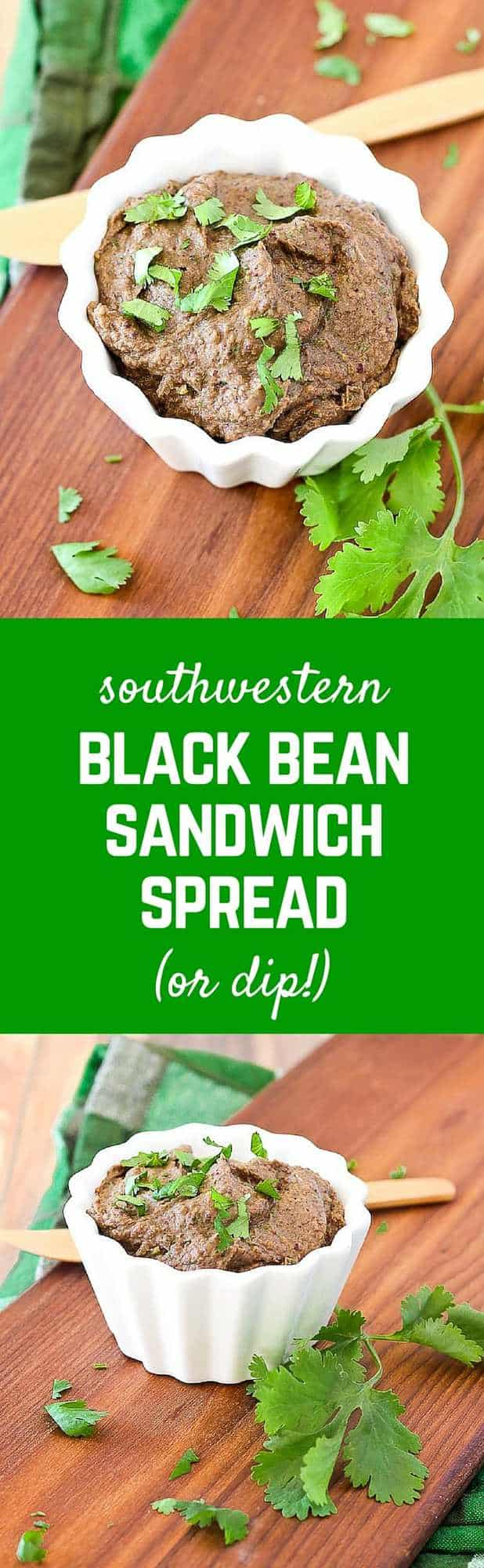 This Black Bean Dip Recipe makes a great sandwich spread - comes together in seconds, flavored by taco seasoning and unbelievably creamy thanks to avocado. Get the recipe on RachelCooks.com!