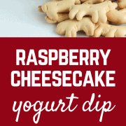 This raspberry cheesecake yogurt dip is a great summertime treat and perfect for dunking fruit, crackers, or cookies into it. Get the sweet dip recipe on RachelCooks.com