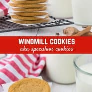 Full of delightfully warm spices, these slice and bake windmill cookies are made the easy way, without a mold or stamp. And they're nut-free!