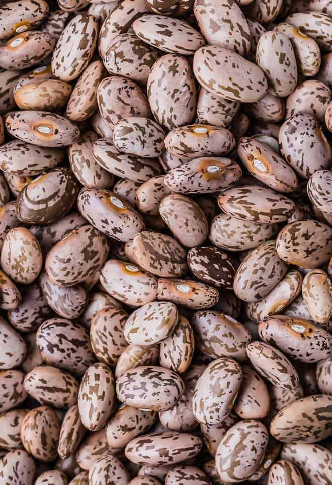 Close up image of dry pinto beans.
