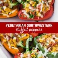 素食馅辣椒,富含健康可口的玉米、平托豆、西红柿、青韭菜、米饭和奶酪。作为主菜或配菜完美。