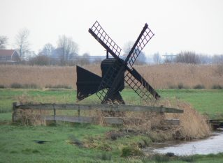 The Polder Model in Action