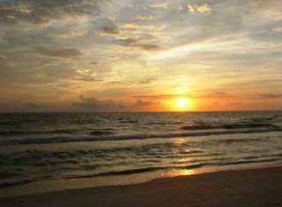 Marco Island: a Relaxing, Wildlife-Viewing Vacation