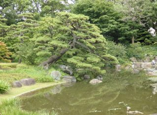 5 Tokyo Gardens